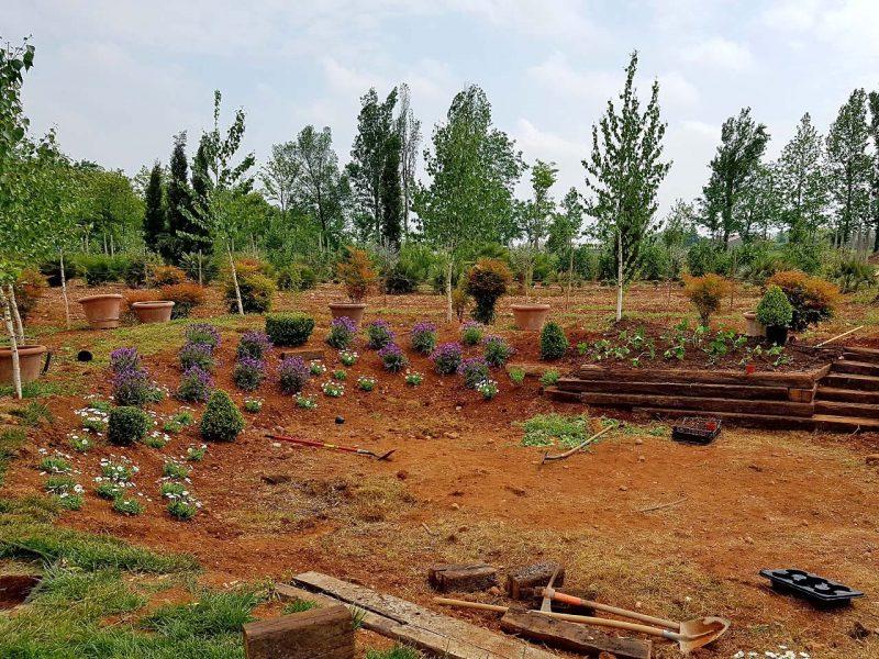 costruzione aree verdi