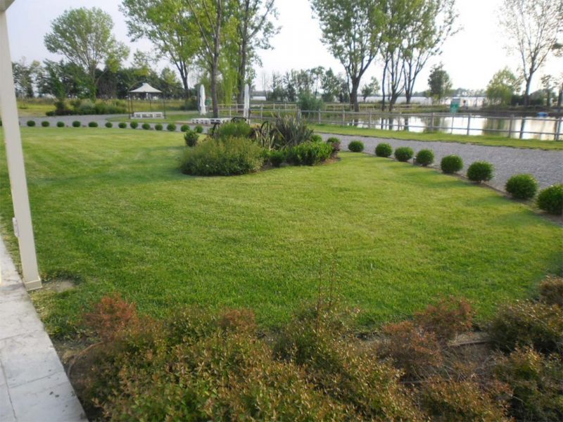 giardino con stagno